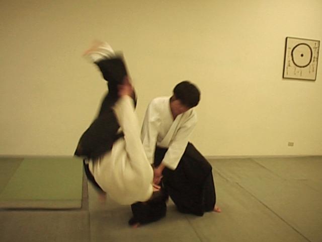 Aikido Kosa Dori